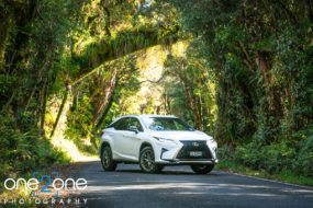 The All New Lexus RX